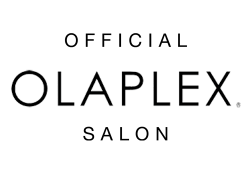 olaplex best
